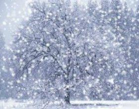 Čikago: Nakon 100 godina pao snijeg u aprilu