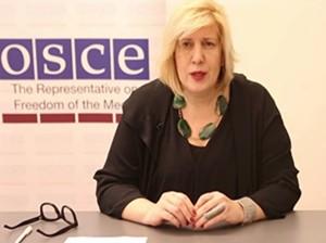 Dunja Mijatović/OSCE screenshot
