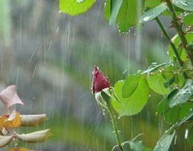 Oblačno, kiša povremeno