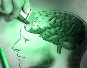 Postoje neuroni odgovorni za zaboravljanje