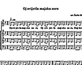 Sporno kažnjavanje za neodavanje počasti himni