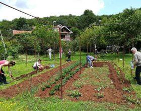 Socijalne bašte – veliko rješenje sa malo ulaganja