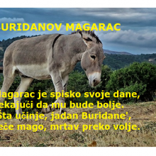 Buridanov magarac
