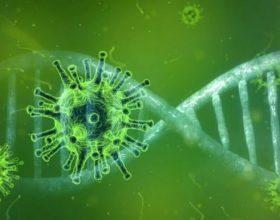 Otkriven supersoj, nova mutacija korone