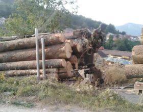 Boj komerc počeo da izvlači posječena stabla, građani najavljuju blokadu