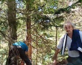 Inspekcija traži deblokadu šumskog puta