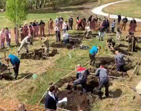 Ko će prije iskopati grob (VIDEO)