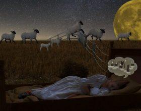 Ko je skloniji depresiji – ranoranioci ili noćne ptice