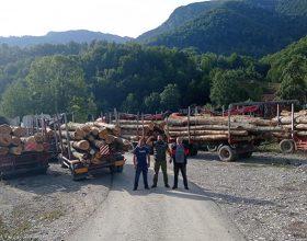 Konjusi: Mještani ustali da brane šume (video)
