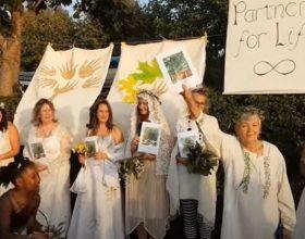 Vjenčanjem spašavaju drveće (video)